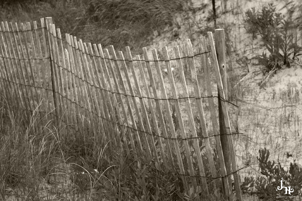 Fence Along the Beach